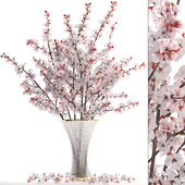 Collection of flowers 24. Bouquet of cherry blossoms
