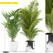 PLANTS 191