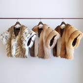 the 3 types of fur