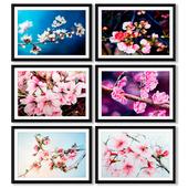 Коллекция постеров с весенними цветками.