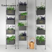 Kitchen herbs # 3
