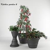 Ornamental garden # 6