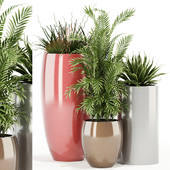 Plants collection 100 Awesomeplanters