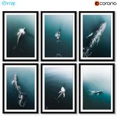 Постеры с китом.