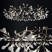 Chandelier Moooi Heracleum the Big O
