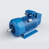 Электродвигатель 5МТ