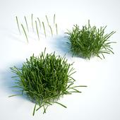 Grass for the exterior