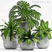 PLANT SET -100