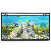 new modern aquarium