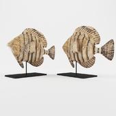 Cameroon Fish Weylandts
