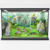 modern aquarium avatar