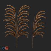 NAGA decor wheat set