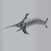 Decorative skeleton of fish
