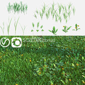 Set for the creation of field grass and lawns