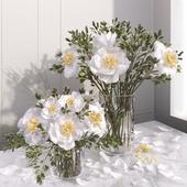 White peony flower vase