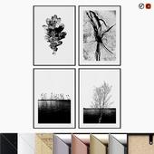 DESENIO BW Trees