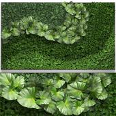 Vertical garden 27.
