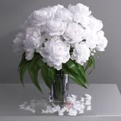 Giant white peonies vase