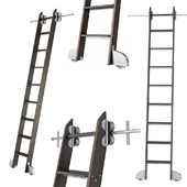 Ladder for home library