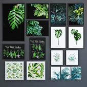 BRW posters set PLANTS