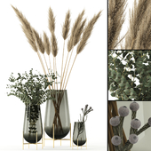 Plants in Echasse Vases