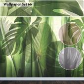 Wallpaper 66