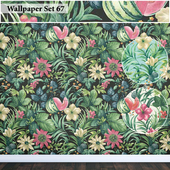 Wallpaper 67