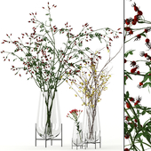 Twigs in Echasse Vases