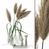Grass in round vase