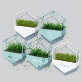 Hanging hexagon planters
