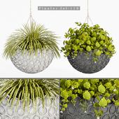 plant set-110