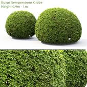 Box Spherical # 1