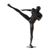 Abstract male mannequin fighter karate 16