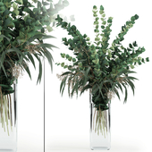 Eucalyptus in tall vase