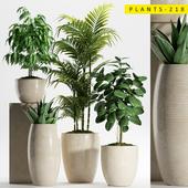 PLANTS 218