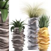 Коллекция растений 289.