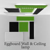 Eggboard wall and ceiling