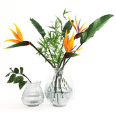 Exotic bouquet- strelitzia