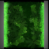 JC Green Moss Fitowall 2