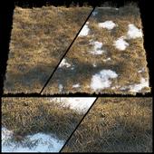 Сухая трава | Проталины