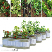 Garden | Kitchen garden