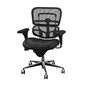 Beckson Mesh Task Chair
