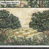 Wallpaper 163