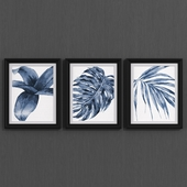 BOTANICAL set of 3 Monstera Papyrus Fern