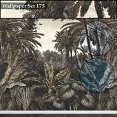 Wallpaper 175