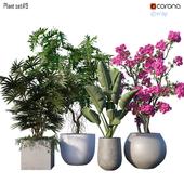 Plant set # 9