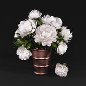 Bouquet of peonies 2