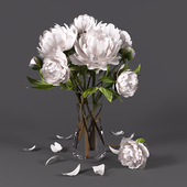Bouquet of peonies 3