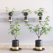 Deco Plants Set 1