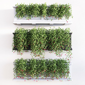 Mayne fairfield window box planters